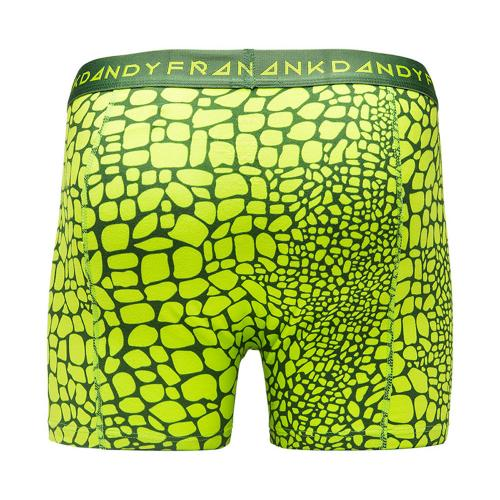 FRANK DANDY/Crocodile Boxer(Green)